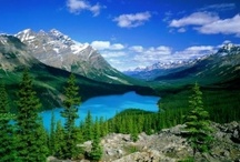Staycation Alberta / Things to do in and around Alberta / by CWT Vacations Canada