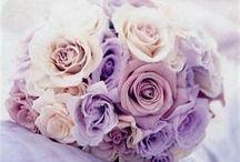 Flowers / by Lexi Radomile