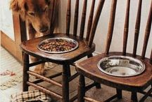 koiran ruokakupit