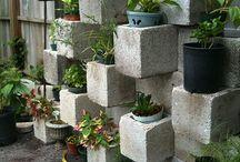 gardens / by Adanna Moriarty
