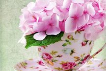 Teapots & Cups & Flowers