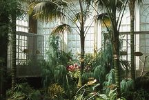 conservatory/internal jungle