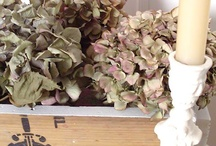 FLORES SECAS / http://decoshabbychic.blogspot.com.es/