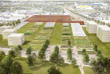 Green roof - Toitures végétalisées