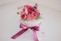 my cake(Darj.co.kr) / Darcom J House  Cake