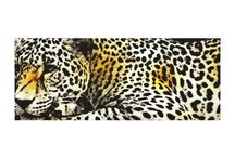 Canvas Prints / Photography digital prints.