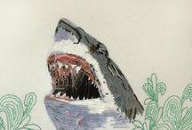 Zissou Shark Ship Sea