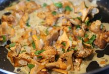 recepty houby