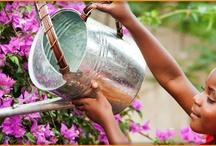Garden 365 - Garden Help / Great tips to ensure a positive container gardening experience!