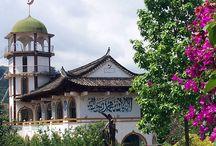 Chinese Islamic