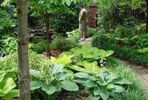 Stein und schattengarten