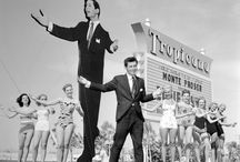 TropLV History / by The NEW Tropicana Las Vegas - A DoubleTree by Hilton