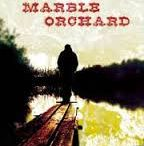 """The Marble Orchard / """"A brilliant debut.""""–Kirkus (Starred Review)  """"Sure to satisfy readers of both crime and literary fiction, Alex Taylor's dark and suspenseful novel about violent criminals in the backwoods of Kentucky and a long kept familial secret, The Marble Orchard, is also filled with some of the most beautiful and startling prose I have ever read. It is an amazing achievement.""""–Donald Ray Pollock, author of Knockemstiff and The Devil All the Time"""