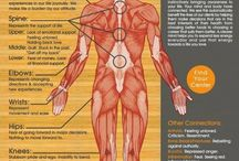 Men's Pelvic Health / 8-10% of men suffer from pelvic pain, 50% of men over the age of 50 experience erectile dysfunction, and up to 80% of men leak urine following a prostatectomy. The good news is knowledge is power and pelvic floor physical therapy can help. This boards covers male anatomy, physiology, normal pelvic floor function, dysfunction, and how to find help for bothersome symptoms.