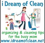 Cleaning Tips / by Kristy Frederick