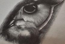 My Draw (Holmeberg) / My Draw