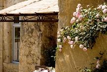 Provence cafe