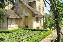 Le garden  / gardening