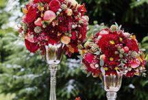 nunta dana