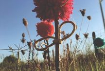 Creare fiori pom pom di lana / Creare fiori pom pom di lana.  Idea Creativa per dare colore ad un angolo della vostra casa.  #fiori #pompom #diy #handmade #diycrafts #mycandycountry  Seguimi su: www.mycandycountry.it