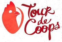 Phoenix Tour de Coops