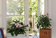 windowsills decoration/Fönsterbräda in Swedish