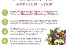 Erika #BloomsByThePinContest2018