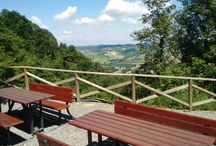 THINGS TO DO IN MONFERRATO