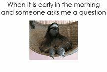 Funny puns/memes