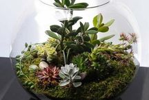 Garten / Gartenmöbel aus Paletten