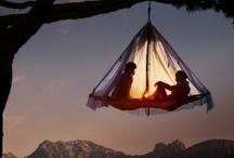 Camping. / by Jenna M