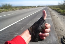 Bike Across America / Many are my images from my 2008 and 2011 trips, but I'll also pin other inspiring images. You can view my journals of my trips here: 2011 www.bikeacrossamerica.net and 2008 www.bikeacrossamerica.org/trip-report/   Also, I invite you to read my memoir about my first bike across USA trip, titled Under a Triumphant Sky: www.amazon.com/Under-Triumphant-Sky-Across-America/dp/0692302891/ / by Steve Garufi