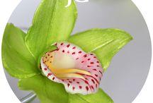 Flowers Of Foamiran (Шаблоны) / Шаблоны различных цветов