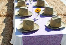 cowgirl bday party / by Tess Hernandes