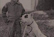 Pit Bull Old School