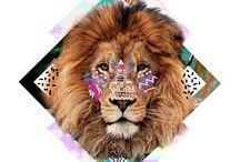 Animal icona