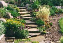 giardino vascalda
