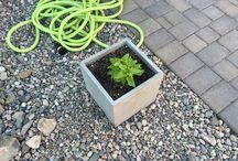Backyard in Arizona / Ideas for my patio and backyard update!