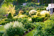 Dream Garden(s)? / by Ariana Haigwood