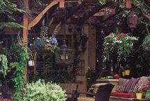 Garden/Backyard