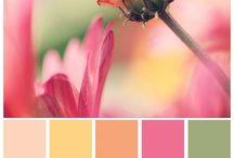 barvy dresscode