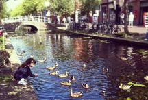 Delft travel guide / travel guide Delft +  tips for a great day with kids ;-)