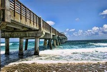 My Florida Favorite's / Place's and thing I love about my home place. Thanks everyone for sharing your pictures. / by Dee