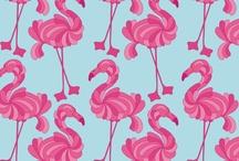 Pattern / by Elise .
