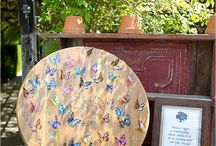 motyle ślub