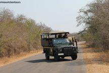 Self-Drive Safaris in the Kruger Park
