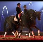 Horse show - Appassionata