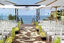 wedding ideas / by Brionna French