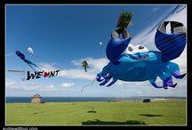 My kite wishlist / by Christian