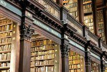 Library / こういう図書館の雰囲気っていいですよね、私は本あまり読まないんですが。